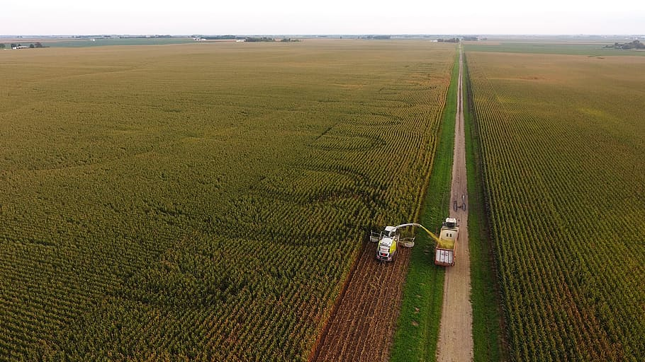 AgroPublic | agriculture corn farming crop