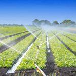 AgroPublic | agriculture waste water adobestock 86772407