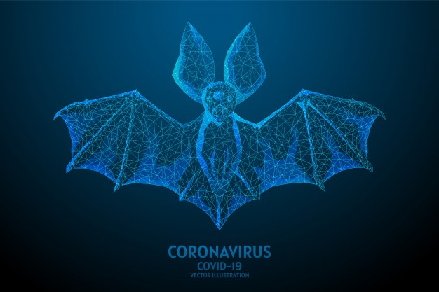 bat is carrier spread virus infection chinese coronavirus covid 19 carrier infectious atypical pneumonia sars cov 2 pandemic low poly wireframe illustration 90744 414
