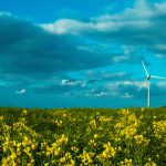 blue sky farming wind turbine yellow flowers 3637277
