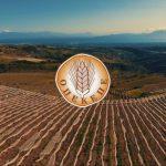 AgroPublic | opekepe 1