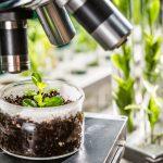 AgroPublic | plantscience