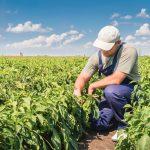 AgroPublic   Farmer Lead