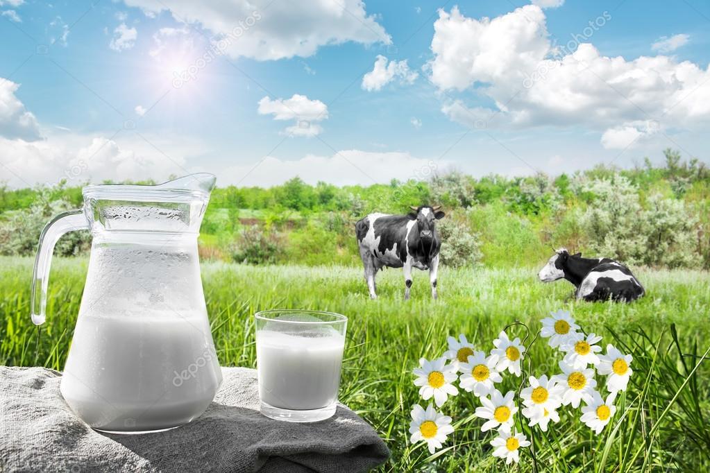 depositphotos 118787898 stock photo glass jug with milk and