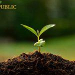 AgroPublic | agropublic plant