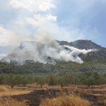 AgroPublic | fire korinthos