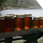 AgroPublic | honey jars bench coast