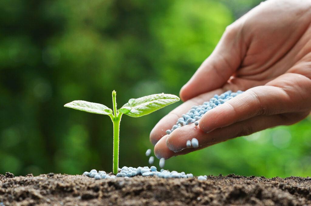 AgroPublic | outlook for the global fertilizer market