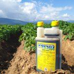 AgroPublic   viusidagro 2
