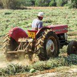 AgroPublic | tractor watermelon