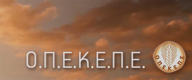 OPEKEPE 1