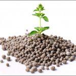 AgroPublic | S719900664 g