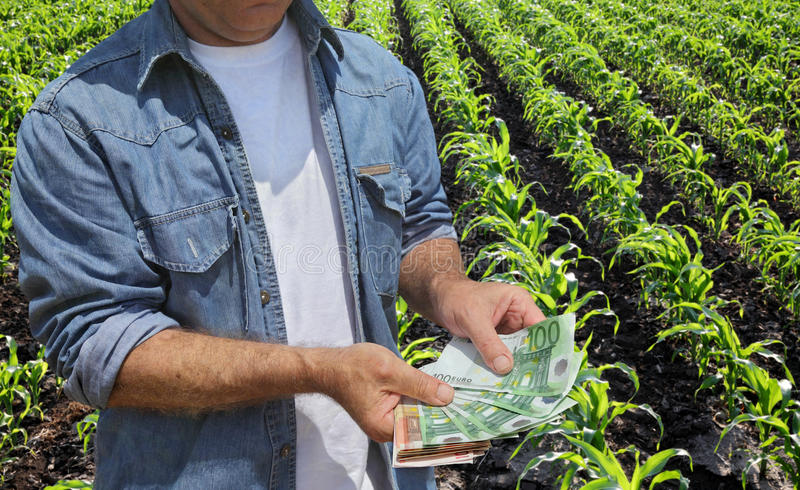 agricultural concept farmer money field holding euro banknote green cultivated corn background 52749939 1