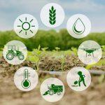 farm agri business