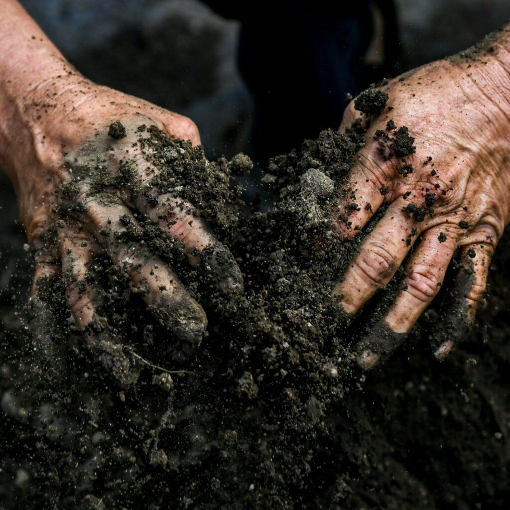 AgroPublic | soil