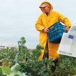 AgroPublic | agrotes lefta