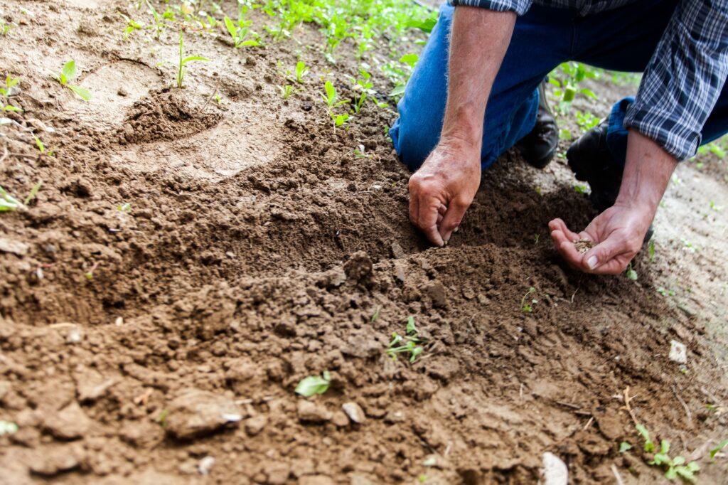 AgroPublic | agrotes omada