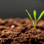 AgroPublic | gonimotita tou edafous