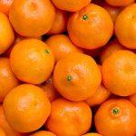 AgroPublic | mantarin 267735461
