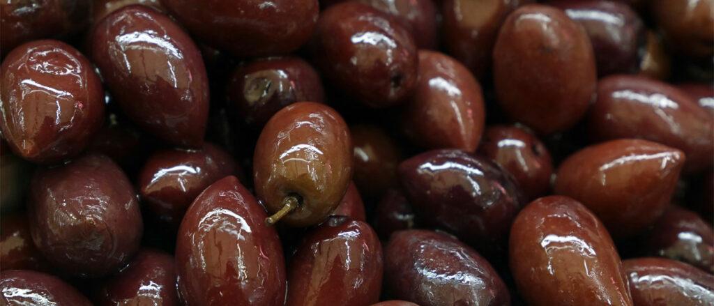 AgroPublic | olives kalamon 542545363