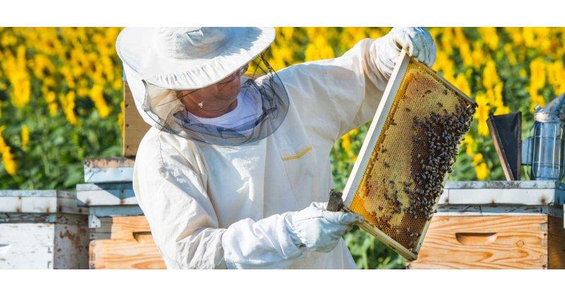 Πως θα γίνεται η μετακίνηση των μελισσοκόμων;