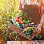 AgroPublic   1607926139 0 agriculture