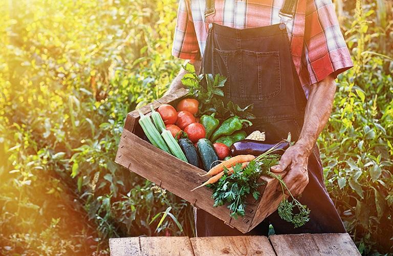 AgroPublic | 1607926139 0 agriculture