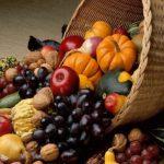 AgroPublic | 1608274574 0 agrodiatrofi 1507