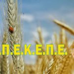 AgroPublic | OPEKEPE