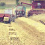 AgroPublic | PAA