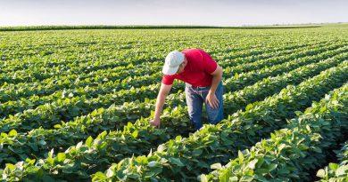 Έρχονται επιχορηγήσεις και των προκαταβολές ενισχύσεων για τους αγρότες