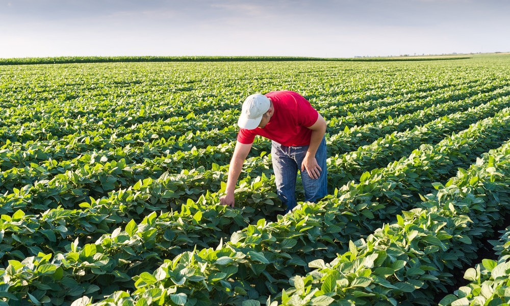 AgroPublic | agriculture farming industry 1000x600 1