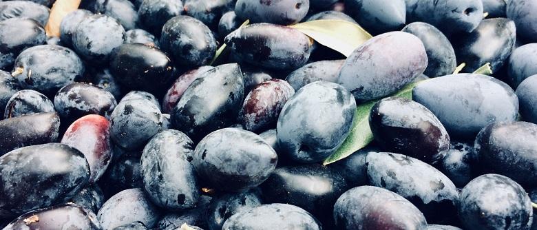 AgroPublic | elies kalamon
