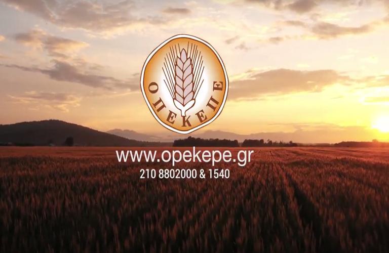 AgroPublic   opekepe