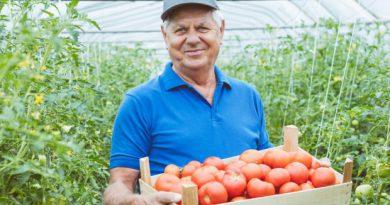ΥπΑΑΤ: Παραινέσεις για συνέχιση της συγκομιδής και διάθεσης των αγροτικών προϊόντων