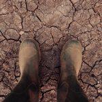 AgroPublic | 190923 climate change dust bowl soil health soil organic matter 2