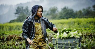 Σε κίνδυνο οι ενισχύσεις των νέων αγροτών λόγω εμπλοκής με τα προγράμματα κατάρτισης