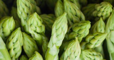 5 Λόγοι για να καταναλώνετε περισσότερα σπαράγγια