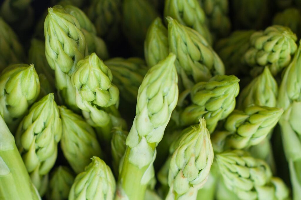 AgroPublic | sparagkia