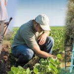 AgroPublic | neoi agrotes 696x392 2 1