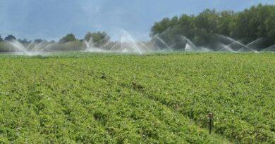 Κ. Μακεδονία: 102,5 εκατ. ευρώ για επενδύσεις σε αγροτικές περιοχές