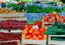 Κρήτη: Ενίσχυση για τα θερμοκηπιακά κηπευτικά ζητούν παραγωγοί