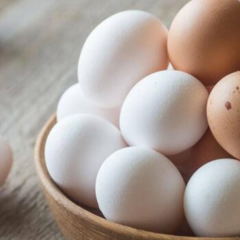 AgroPublic | eggs