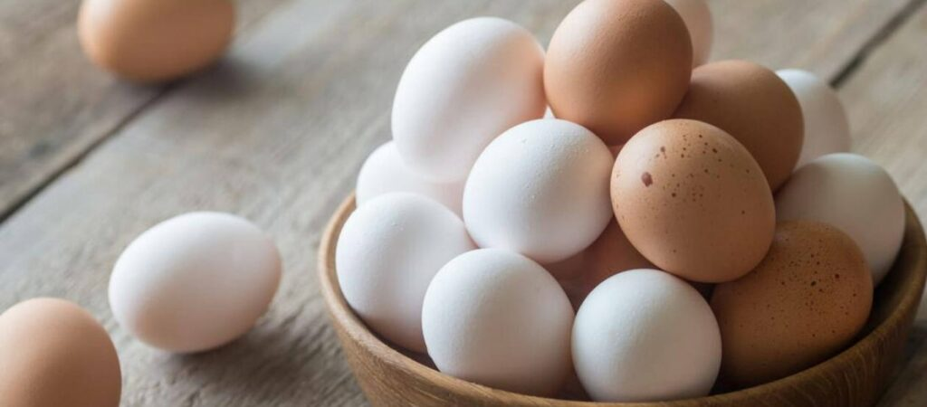 AgroPublic   eggs