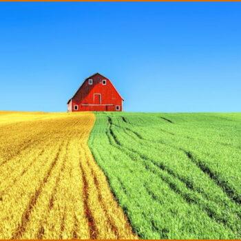 AgroPublic | farm 2796509 1280 938x491 1