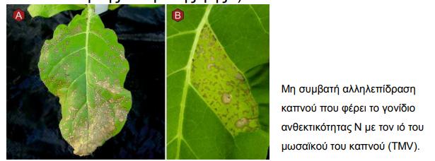 AgroPublic   image 2