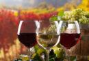 Πώς κινήθηκαν οι εξαγωγές οίνου ανά χώρα
