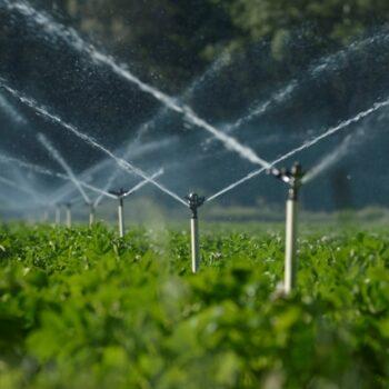 AgroPublic | άρδευση αγροτικών εκτάσεων 1