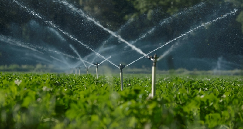 AgroPublic   άρδευση αγροτικών εκτάσεων 1