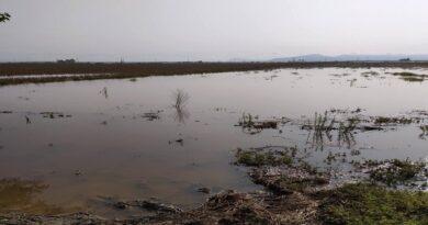 Αποζημιώσεις από πλημμύρες: Τι δικαιολογητικά πρέπει να περιέχει ο φάκελος